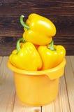 Κίτρινη πάπρικα στο κύπελλο Στοκ Εικόνα