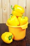 Κίτρινη πάπρικα στο κύπελλο Στοκ φωτογραφίες με δικαίωμα ελεύθερης χρήσης