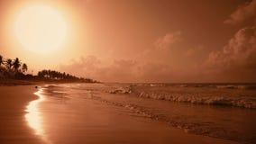 Κίτρινη παραλία νησιών φοινικών ηλιοβασιλέματος ο ήλιος απόθεμα βίντεο