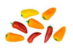 Κίτρινη, πορτοκαλιά και κόκκινη γλυκιά μίνι πάπρικα που απομονώνεται στο άσπρο υπόβαθρο στοκ εικόνες