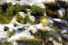 Κίτρινη σφαίρα στο χριστουγεννιάτικο δέντρο Στοκ Εικόνες