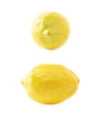Κίτρινη τεχνητή πλαστική διακόσμηση λεμονιών Στοκ εικόνα με δικαίωμα ελεύθερης χρήσης