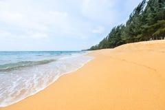 Κίτρινη τροπική αμμώδης παραλία και μπλε τοπίο θάλασσας Στοκ Εικόνες