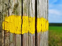 Κίτρινη χρωματισμένη γραμμή στοκ φωτογραφία με δικαίωμα ελεύθερης χρήσης