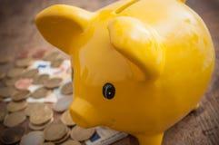 Κίτρινη piggy τράπεζα στα ευρο- νομίσματα και τραπεζογραμμάτια στο wo Στοκ εικόνες με δικαίωμα ελεύθερης χρήσης