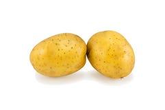 Κίτρινοι βολβοί πατατών Στοκ φωτογραφίες με δικαίωμα ελεύθερης χρήσης