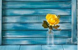 Κίτρινος αυξήθηκε σε ένα υπόβαθρο των μπλε χρωματισμένων πινάκων Στοκ Φωτογραφία