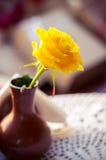 Κίτρινος αυξήθηκε vase Στοκ Εικόνες