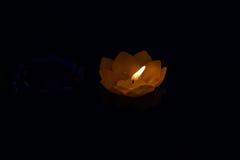 Κίτρινος ζωηρόχρωμος λουλουδιών κεριών στο νερό αυτό μαύρο Στοκ Εικόνες