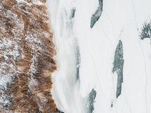 Κίτρινος κάλαμος και παγωμένος ποταμός στο χειμώνα Στοκ Εικόνα