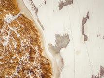 Κίτρινος κάλαμος και παγωμένος ποταμός στο χειμώνα Στοκ φωτογραφία με δικαίωμα ελεύθερης χρήσης
