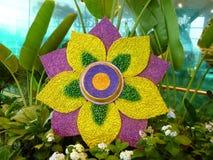 Κίτρινος κήπος λουλουδιών Στοκ φωτογραφίες με δικαίωμα ελεύθερης χρήσης