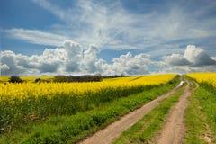 Κίτρινος και σύννεφα Στοκ φωτογραφία με δικαίωμα ελεύθερης χρήσης