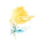 Κίτρινος, μπλε καλλιτέχνης απεικόνισης διαζυγίου λεκέδων Στοκ φωτογραφία με δικαίωμα ελεύθερης χρήσης