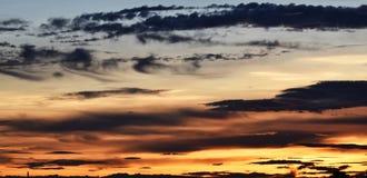 Κίτρινος ουρανός πριν από το ηλιοβασίλεμα πέρα από το δέντρο σκιών στον τομέα ρυζιού το βράδυ Στοκ φωτογραφίες με δικαίωμα ελεύθερης χρήσης