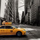 Κίτρινος σε έναν κόσμο γραπτού στοκ φωτογραφία με δικαίωμα ελεύθερης χρήσης