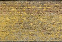 Κίτρινος τουβλότοιχος Στοκ εικόνα με δικαίωμα ελεύθερης χρήσης