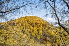 Κίτρινος το βουνό Στοκ φωτογραφία με δικαίωμα ελεύθερης χρήσης