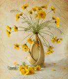 κίτρινος Στοκ Φωτογραφία