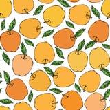 Κίτρινο άνευ ραφής ατελείωτο σχέδιο της Apple Κόκκινος καρπός μήλων Το σπίτι παρασκευάζει Φυτική συλλογή συγκομιδών φθινοπώρου ή  Στοκ φωτογραφία με δικαίωμα ελεύθερης χρήσης