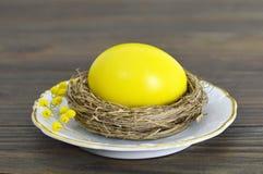 Κίτρινο αυγό Πάσχας στη φωλιά Στοκ Φωτογραφίες