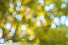 Κίτρινο αφηρημένο ελαφρύ υπόβαθρο bokeh, υπαίθριο Στοκ εικόνες με δικαίωμα ελεύθερης χρήσης