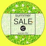 Κίτρινο διανυσματικό έμβλημα θερινής πώλησης με τα φρέσκα πράσινα φύλλα, chamomile, butterflyand απεικόνιση αποθεμάτων