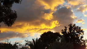 Κίτρινο ηλιοβασίλεμα Αυστραλία Αδελαΐδα Στοκ εικόνα με δικαίωμα ελεύθερης χρήσης