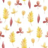 Κίτρινο και κόκκινο φύλλο του άνευ ραφής σχεδίου watercolor Γειά σου Οκτώβριος Νοεμβρίου, Σεπτέμβριος ελεύθερη απεικόνιση δικαιώματος