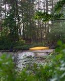 Κίτρινο κανό στη δασική περιπέτεια ακτών λιμνών στοκ εικόνες με δικαίωμα ελεύθερης χρήσης