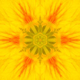 Κίτρινο κεντρικό καλειδοσκόπιο λουλουδιών Mandala ομόκεντρο Στοκ εικόνα με δικαίωμα ελεύθερης χρήσης