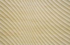 Κίτρινο κεραμικό κεραμίδι με τις κυρτές γραμμές Στοκ εικόνα με δικαίωμα ελεύθερης χρήσης