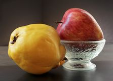 Κίτρινο κυδώνι και η κόκκινη Apple Στοκ Φωτογραφίες