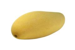 Κίτρινο μάγκο Στοκ Εικόνες