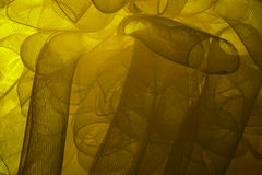 Κίτρινο λουλούδι καθαρό Στοκ εικόνα με δικαίωμα ελεύθερης χρήσης