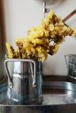Κίτρινο λουλούδι στο βάζο Στοκ Εικόνα