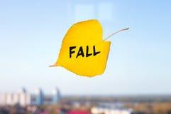 Κίτρινο πεσμένο φύλλο επονομαζόμενο την πτώση που κολλιέται στο παράθυρο στον ορίζοντα Στοκ φωτογραφίες με δικαίωμα ελεύθερης χρήσης