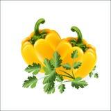 Κίτρινο πιπέρι Στοκ Εικόνα