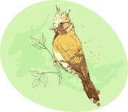Κίτρινο πουλί σε έναν κλάδο Στοκ φωτογραφία με δικαίωμα ελεύθερης χρήσης