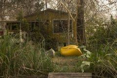 Κίτρινο σπίτι και κίτρινη βάρκα στο δασικό Tigre του δέλτα Μπουένος Άιρες Αργεντινή Λατινική Αμερική Νότια Αμερική συμπαθητική Στοκ φωτογραφία με δικαίωμα ελεύθερης χρήσης