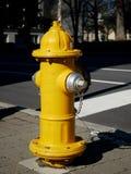 Κίτρινο στόμιο υδροληψίας πυρκαγιάς στοκ εικόνα