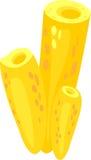 Κίτρινο σφουγγάρι θάλασσας ελεύθερη απεικόνιση δικαιώματος