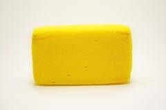Κίτρινο σφουγγάρι Στοκ Φωτογραφίες