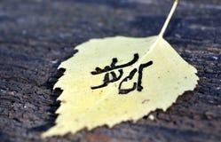 Κίτρινο σχέδιο φύλλων φθινοπώρου παρόμοιο με ιαπωνικό kanji, φθινόπωρο υπογραφών Στοκ Εικόνες