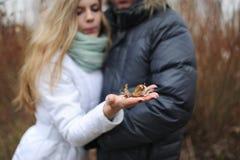 Κίτρινο φύλλο φθινοπώρου σε έναν φοίνικα του όμορφου κοριτσιού Στοκ Εικόνες
