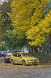 Κίτρινο χρωματίζοντας αυτοκίνητο δέντρων φύλλων στοκ φωτογραφία