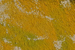 Κίτρινο χρώμα γκράφιτι Στοκ Φωτογραφία