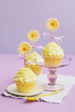 Κίτρινο Cupcakes Στοκ Εικόνες