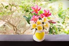 Κίτρινο plumeria ή frangipani λουλουδιών που διακοσμείται στην καλή καρδιά π Στοκ φωτογραφία με δικαίωμα ελεύθερης χρήσης