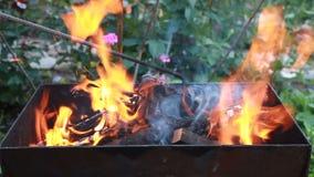καίγοντας δάσος ορειχαλκουργών Πυρκαγιά, φλόγες Σχάρα ή σχάρα απόθεμα βίντεο